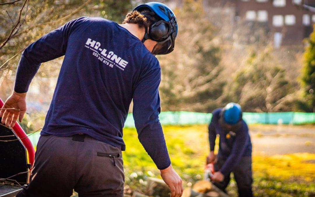 Arborist Climber – Wiltshire
